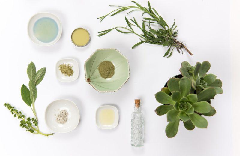 Auf einem weißen Untergrund liegen verschiedene Pflanzen, Pulver und Schälchen – die Inhaltsstoffe von Kosmetik?