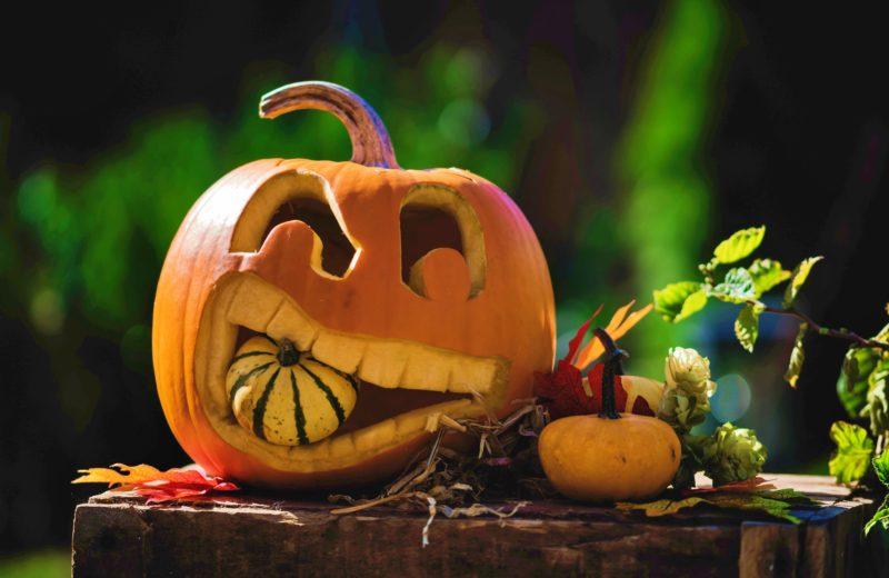 Halloween-Kürbis, lachender Kürbis